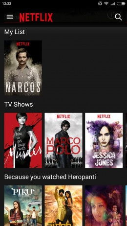 Netflix India review
