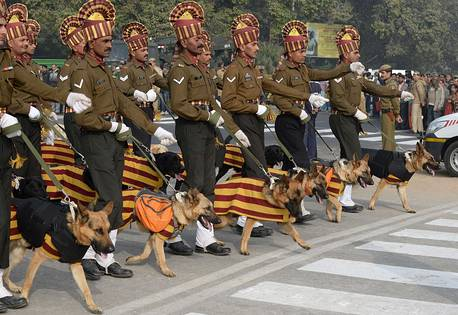 Army Dogs March