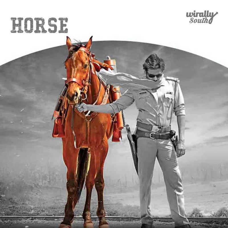 Sardaar's Accessories horse