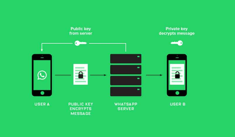Whatsapp_Encryption_Proxima