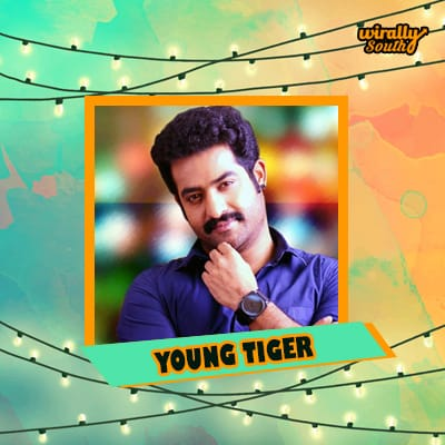 YOUNG TIGER1