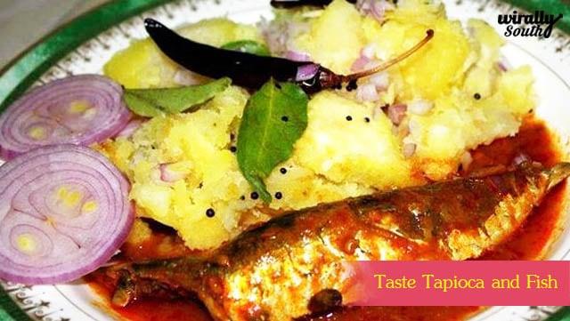 Taste Tapioca and Fish