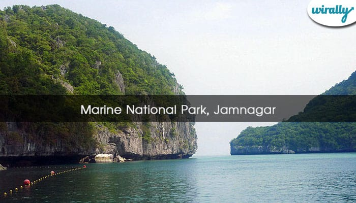 Marine National Park, Jamnagar