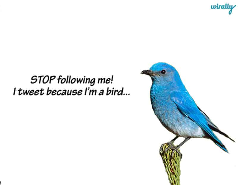blog image-stopfollowing