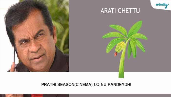 Arati Chettu