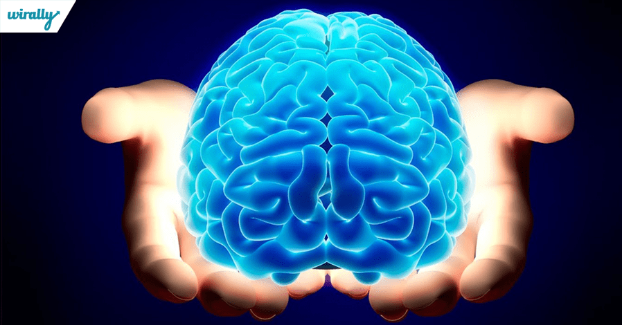 brain-name