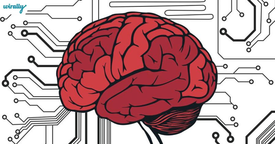brain-storage