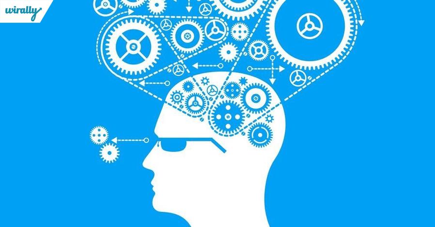 brain-structure