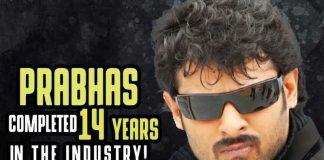 Chatrapati Movie, Mr.Perfect Movie, Rebel Movie, Munna Movie, Baahubali Movie, Mirchi Movie, Billa Movie