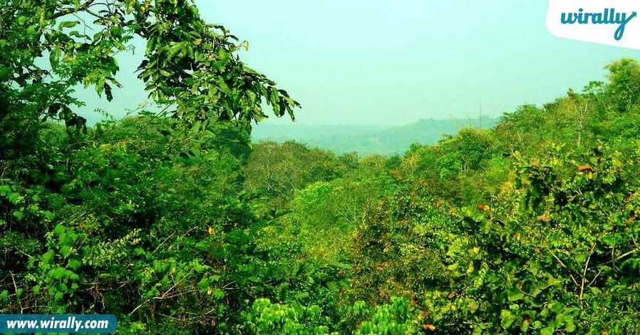 6-eturnagar-wildlife-sanctuary