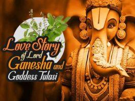 Lord Ganesha, Tulasi