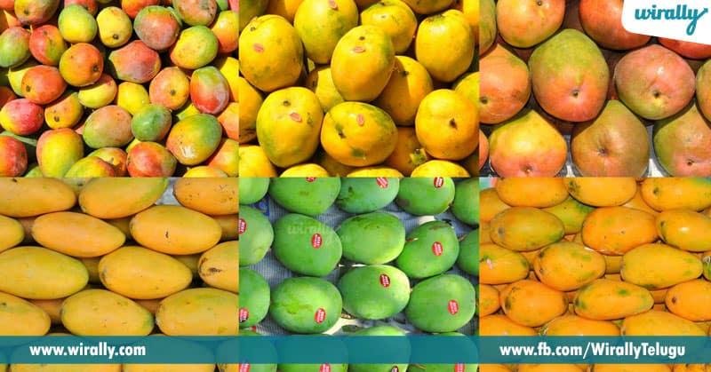 1-mango