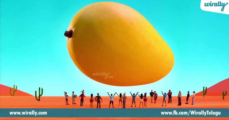 3.-mango