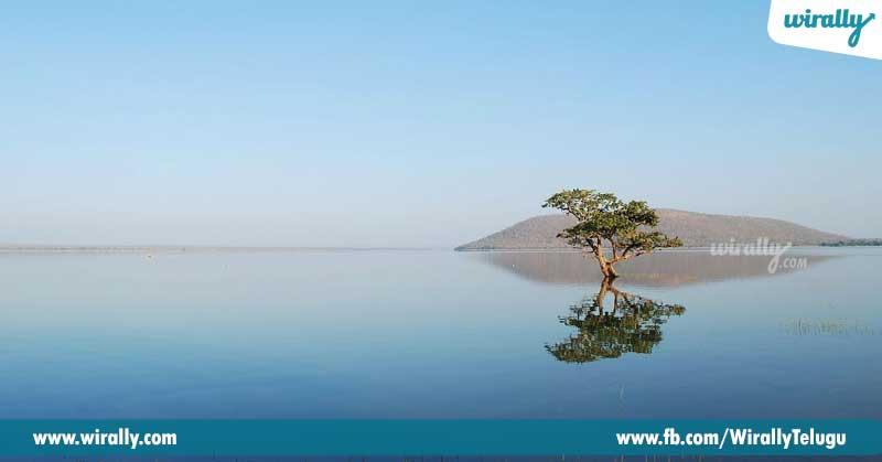7-Pakhal-Lake