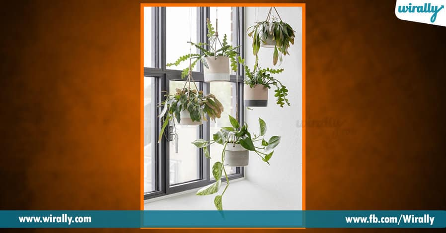 Ideas To Decorate your Home With Nature (1)