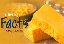 Cheese, Facts About Cheese, Interesting Facts About Cheese