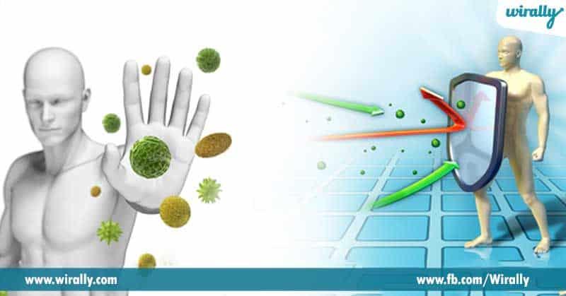 8-Improves-immunity