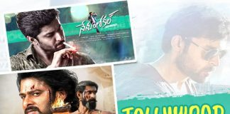 Tollywood, Telugu Movies, Khaidi No 150 Movie, Gautamiputra Satakarni Movie, Shatamanam Bhavati Movie, Baahubali 2 Movie, Nenu Local Movie, Ghazi Movie, Ninnu Kori Movie, Rarandoi veduka chuddam Movie, Fidaa Movie, Guru Movie, Nagaram Movie, Katamarayudu Movie, Om Namo Venkateshaya Movie, Luckunnodu Movie, Gunturodu Movie, Dwaraka Movie, Winner Movie, Chitrangada Movie, Andhagadu Movie, Fashion designer S/O ladies tailor Movie, Babu baga busy Movie, Mister Movie,