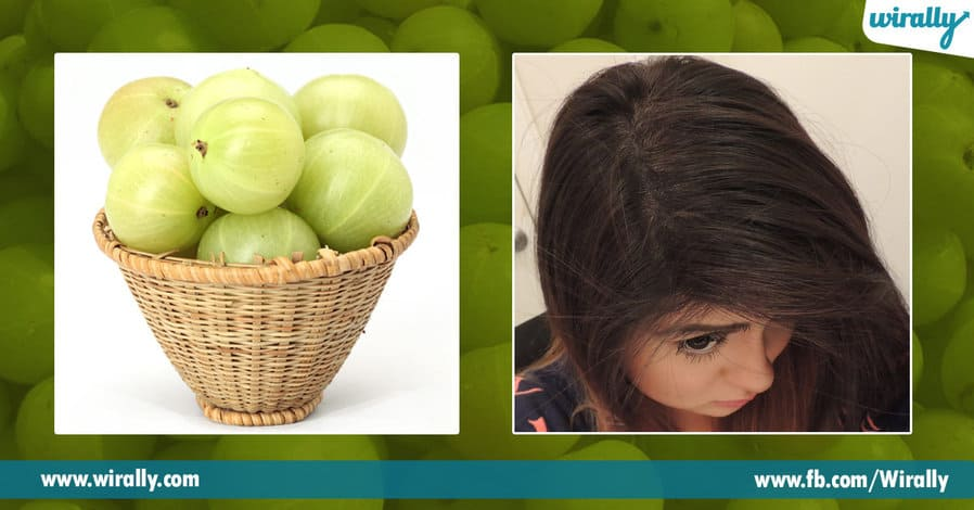 1 Benefits of Amla for our hair