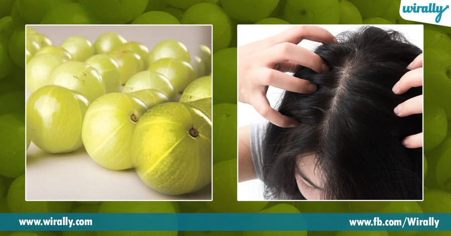 3 Benefits of Amla for our hair