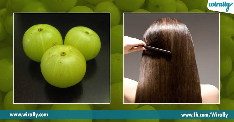 8 Benefits of Amla for our hair