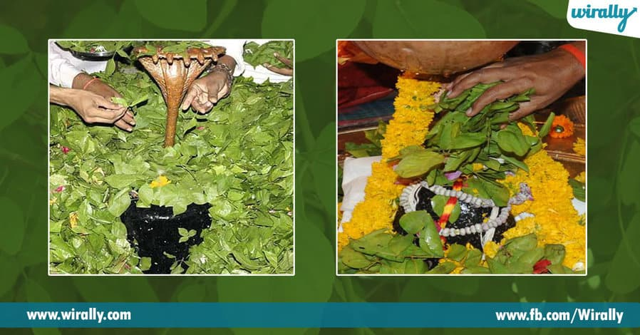 3 Why do we offer Bilva Patram to Lord Shivaa