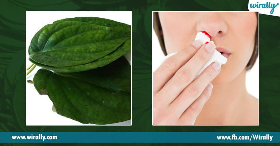 4 Health benefits of Betel Leaves