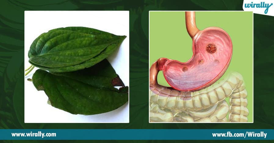 6 Health benefits of Betel Leaves