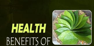 Health, Health benefits, Betel Leaves