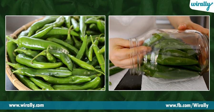 3 green chilli loni arogya gunalu