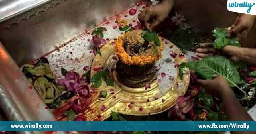 5 swamivaru govu rupamlo darshanam eche guptakashi alaya visheshalu