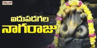 Naga Raju Swamy