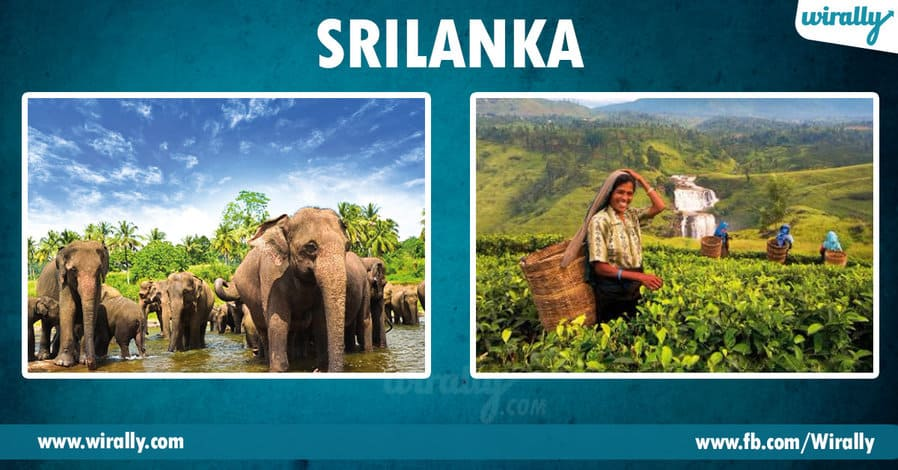 3 - srilanka