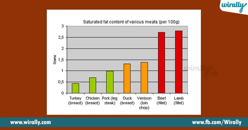 Animal Protein And Plant Protein