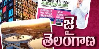 Applauding Achievements Of Telangana State