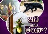 Superstitions That Indians Believe