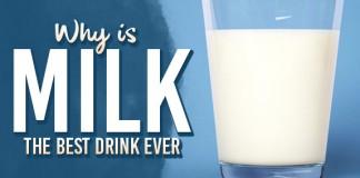 Milk Is The Best Drink
