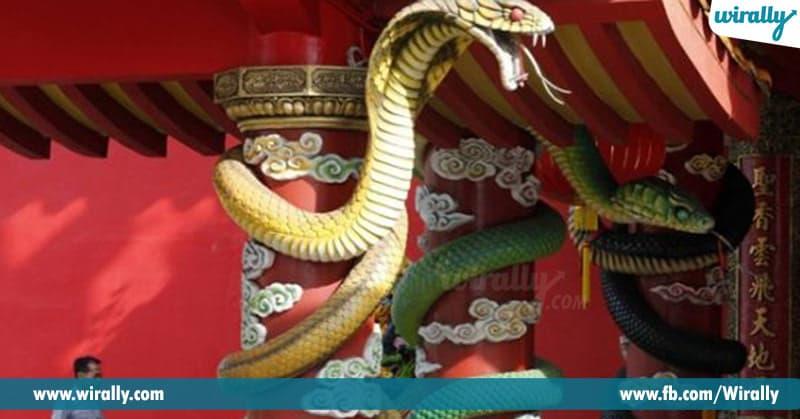 snake temple in Malaysia