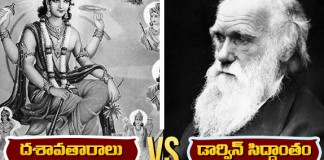 theory of dashavatara vs darwin's
