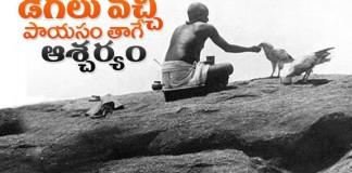 Shivalayamlo Roju