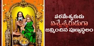 Lord Sanari Vishweshwara Swamula