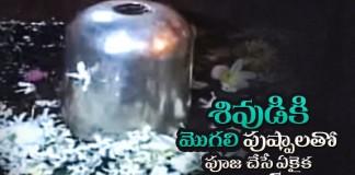Mogilipuula Charitra