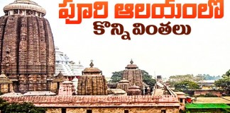 Facts Of Puri Jagannath Temple