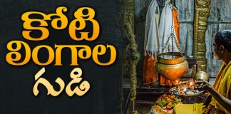 About Chaya Someshwara Swamy