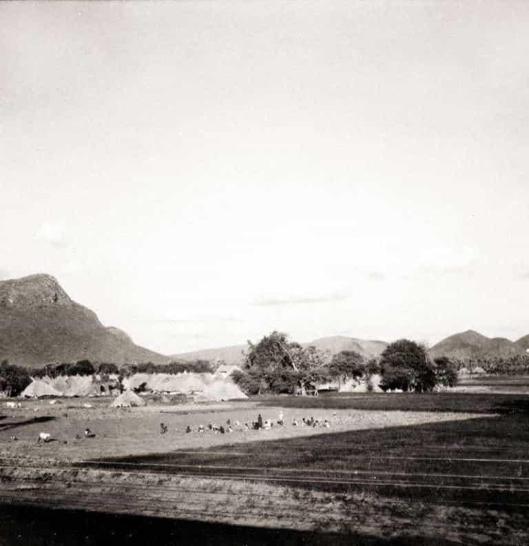 15. Vizagapatnam Agriculture Farms.