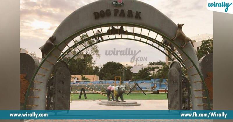 2 - dog park