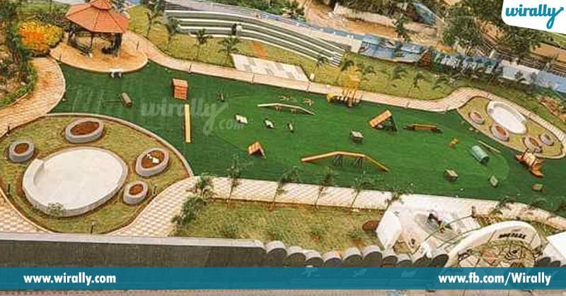 4 - dogs park
