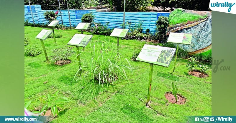 Hyderabad's First Ever Rainwater