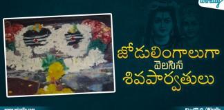 Shiva Parvati Appears
