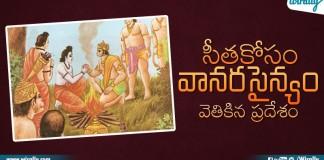 Lord Rama Sent Vanarasena